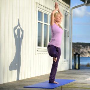 sissel yoga mat 1 300x300 SISSEL® Yoga Mat